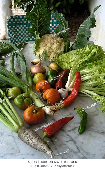 vegetables on a table outside, day