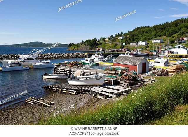 Boats docked in Dildo Harbour, Newfoundland and Labrador, Canada