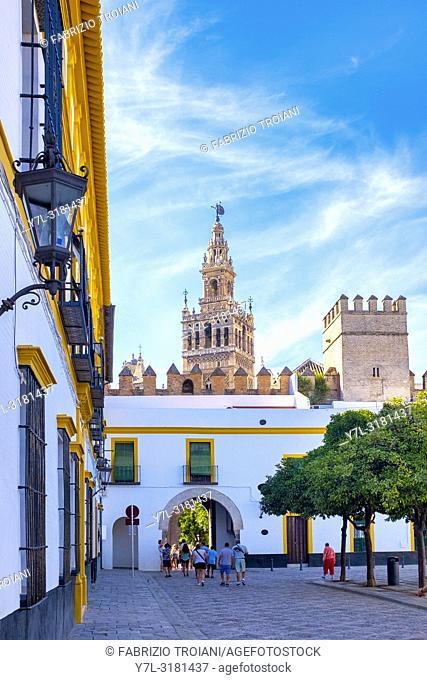 Giralda tower from Patio de Banderas in the Royal Alcazar, Sevilla, Spain