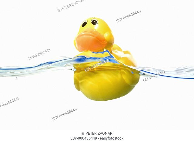 Classic Squeak Toy Rubber Ducky in water