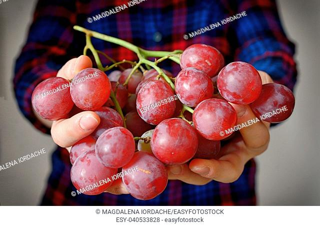 Young woman holding tasty grapes