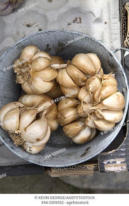 Brown Dried Garlic on Market Stall