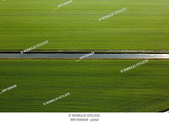 Aerial View, Field Landscape, Baranja, Croatia