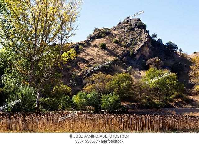 Palomar hill in Aragosa  Guadalajara  Castilla la Mancha  Spain