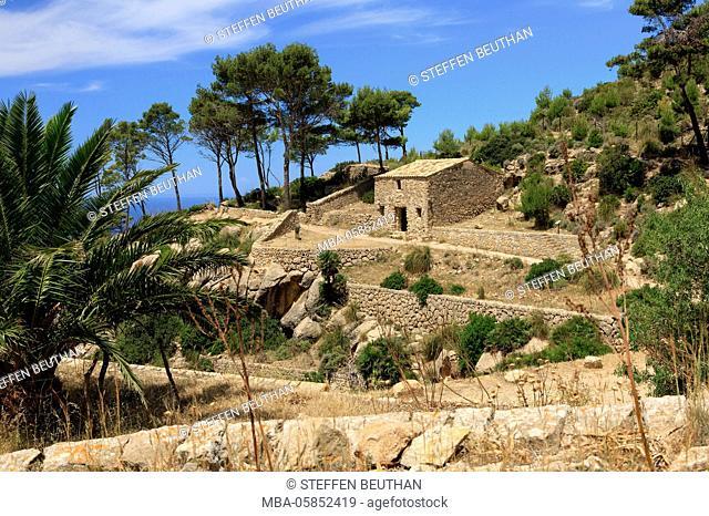 Ruins of the cloister La Trapa, waistcoats the island Majorca, the Balearic Islands, Spain, Europe