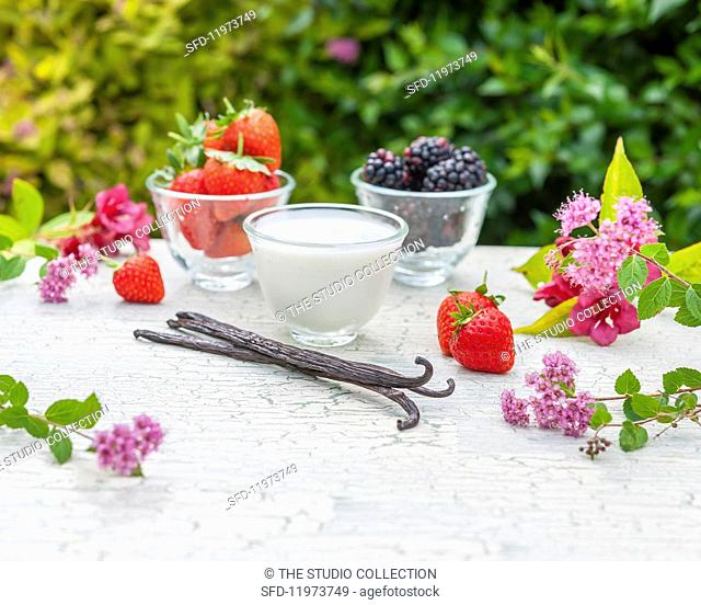 Vanilla pods, summer berries, herbs and yoghurt on a garden table