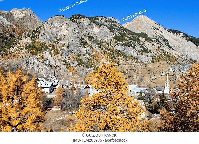 France, Hautes Alpes, the Brianconnais area in autumn, La Claree Valley, Nevache, larch trees