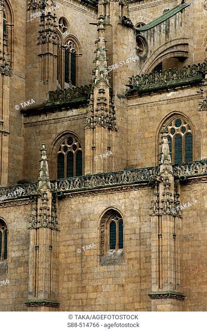 View fron Plaza de Anaya. Catedral Nueva ('new cathedral'). Salamanca. Castilla y Leon. Spain
