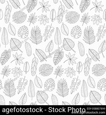Leaves of tropical plants seamless pattern. Black and white outline coloring repeat background. Synadenium, monstera, palm leaf collection for textile and...