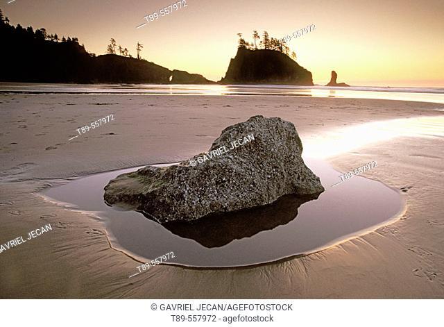 USA , Washington , Olympic National Park, Second Beach