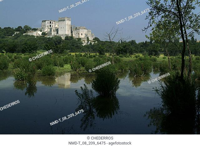 Reflection of trees and buildings in a pond, Provence, France