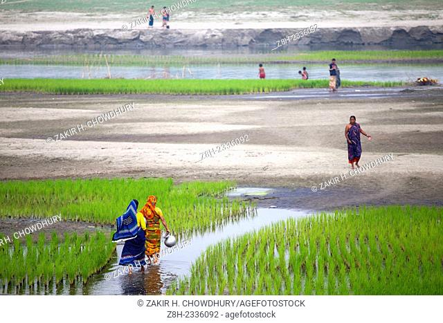 Women going to collect water from a dried up river.Kaliganga river is experiencing low water levels which is tributary of the river Padma