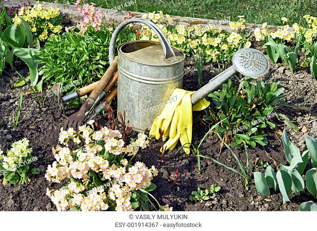 Garden tools in the garden close up
