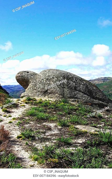 Natural sculpture of turtle, Castro Laboreiro, Portugal