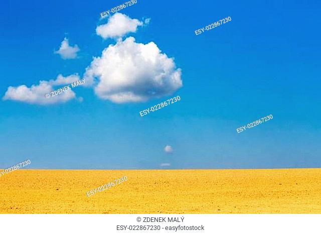 Nice autumn field with white cloud, horizont and blue sky