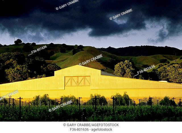 Sunset light on winery, Fetzer Vineyards, East Side Road, near Hopland, Mendocino County, California