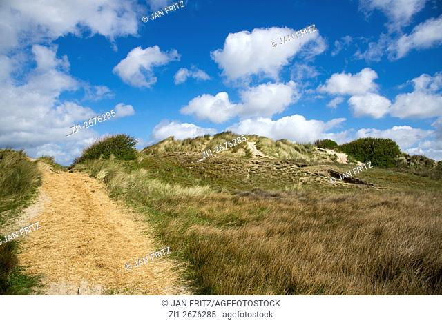sandy path in the dunes of Texel