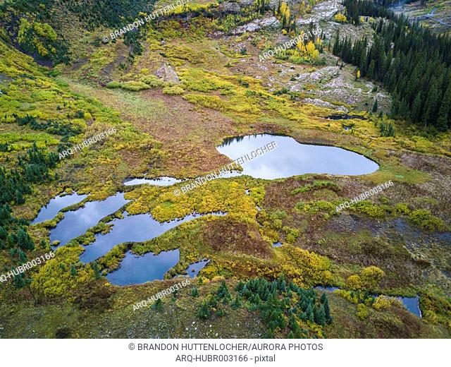 Aerial view of meadow with small ponds, Crested Butte, Colorado, USA
