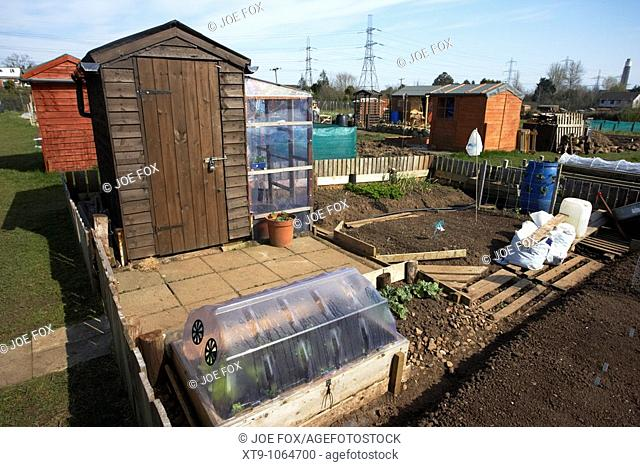 small well organised plot with cold frame and shed on an allotment site in northern ireland uk