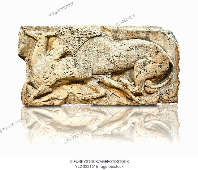 """Lion killing deer from the """"Satyr Hunting Wils Animals, freezes, 460 B. C. From Xanthos, UNESCO World Heritage site, south west Turkey"""