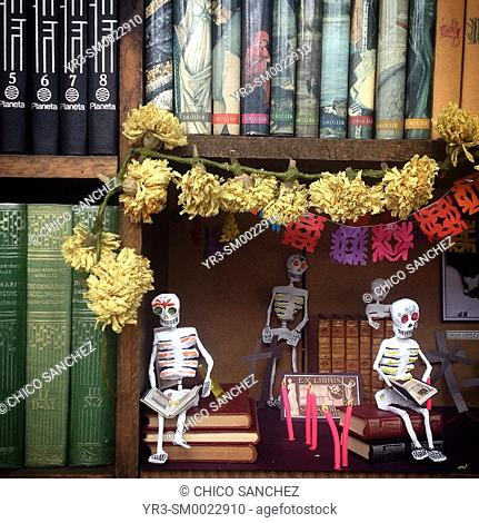 Skeletons decorate a second-hand bookstore during Day of the Dead celebrations in Mexico City, Mexico
