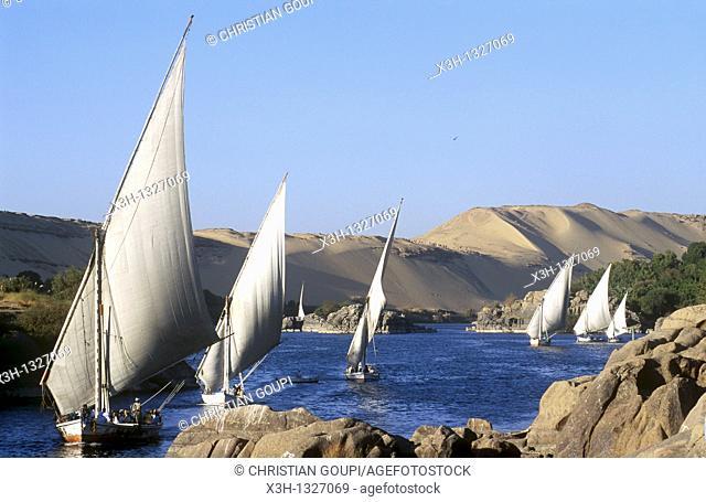 feluccas on the Nile, Aswan, Egypt, Africa