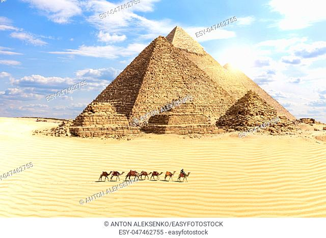 The Great Pyramids of Giza and a train of camels in the desert, Egypt