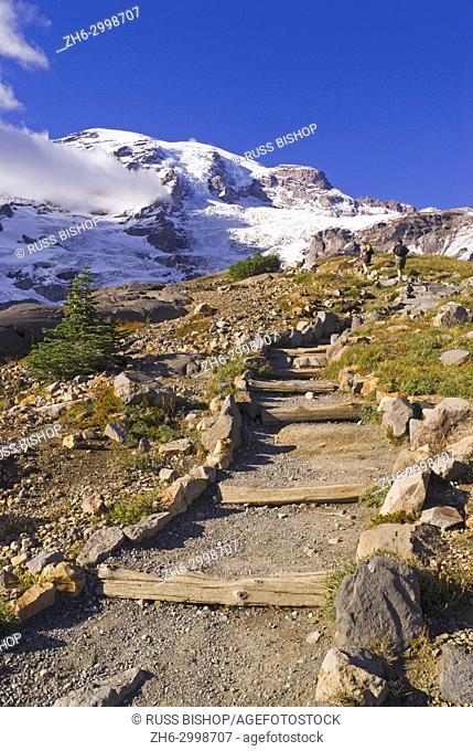 Mount Rainier from the Skyline Trail, Paradise Park, Mount Rainier National Park, Washington USA