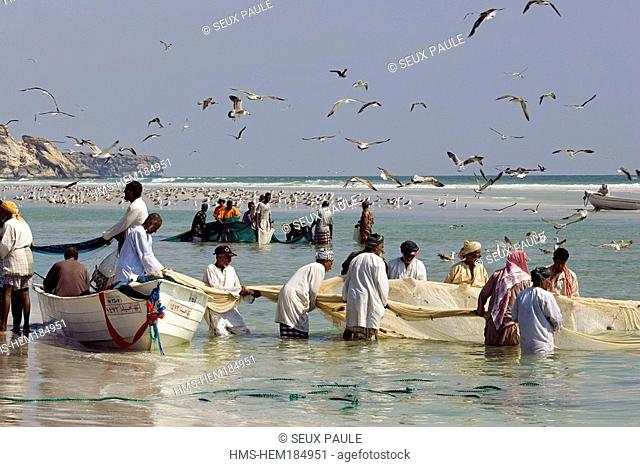 Oman Sultanate, Dhofar region, back from fishing