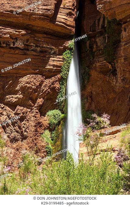 Deer Creek waterfall (mile 137), Grand Canyon National Park, Arizona, USA