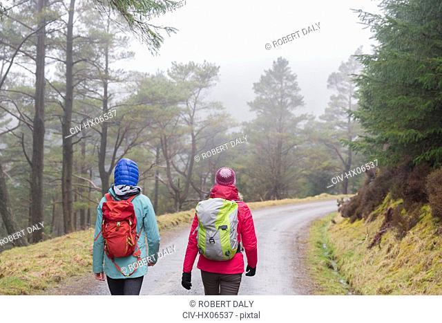 Women hiking in woods