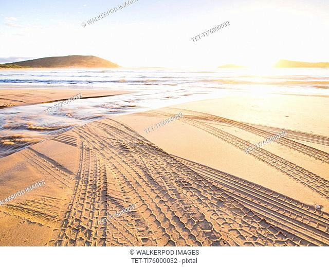 Tire tracks on beach at sunset