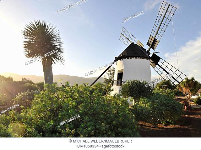 El Molino, windmill near Antigua on Fuerteventura, Canary Islands, Spain, Europe