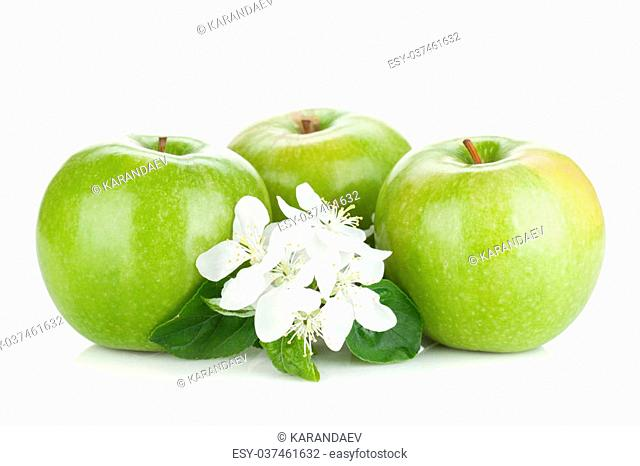 Ripe green apples with flowers. Isolated on white background