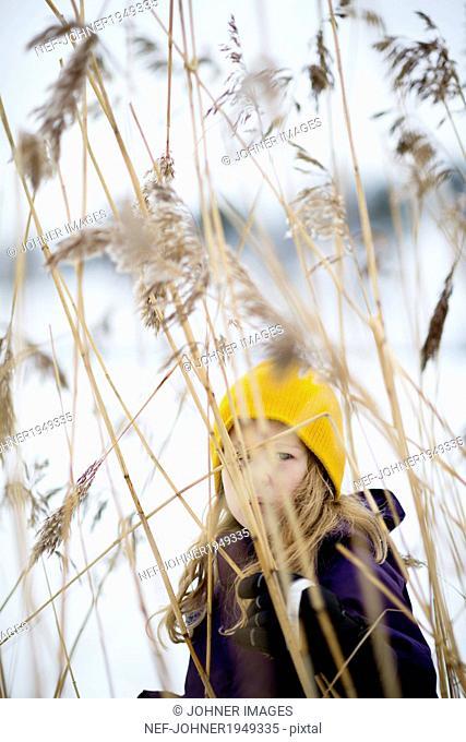 Girl looking through grass< Sweden