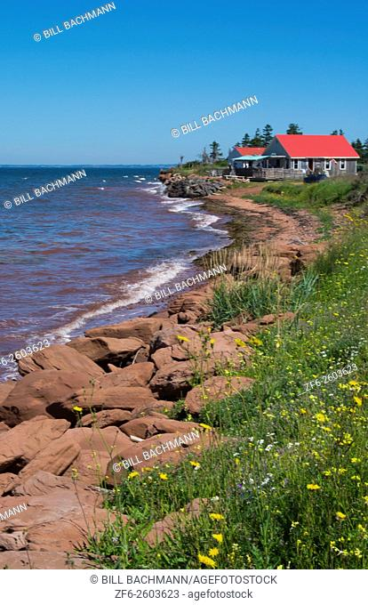 Canada Prince Edward Island, P. E. I. Prim Point shore and waves with red roof house in summer with wild flowers