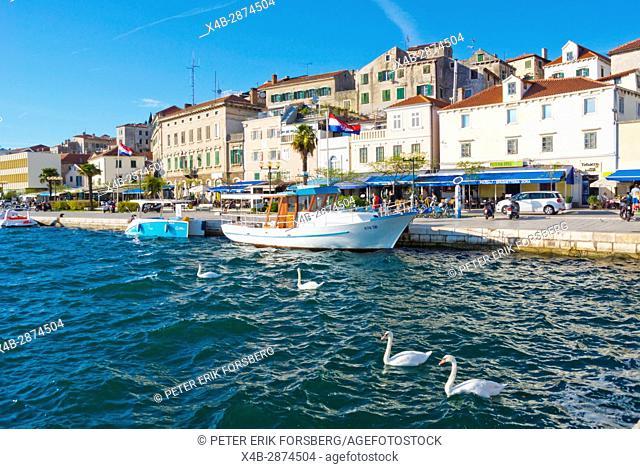 Riva, seaside promenade, with old town in background, Sibenik, Dalmatia, Croatia