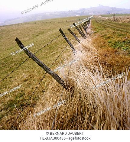 Old wire fence leaning over in field