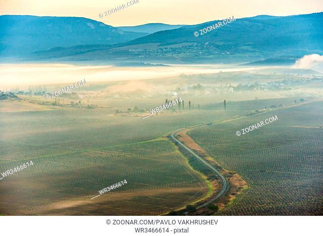 Misty road through fields against sunset