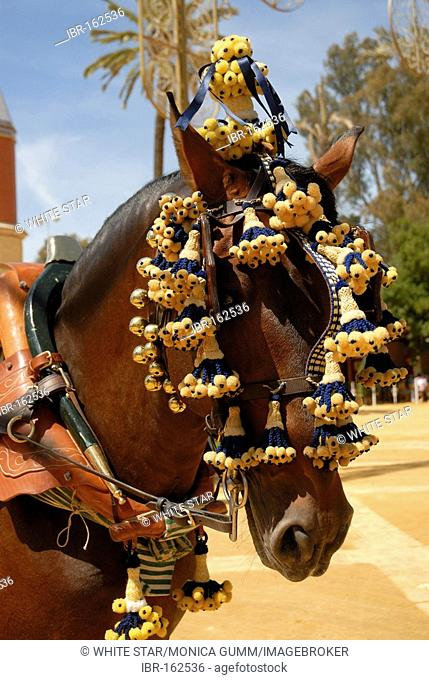 Decorated horse , Feria de Caballo , Jerez de la Frontera , Cadiz , Andalusia , Spain , Europe