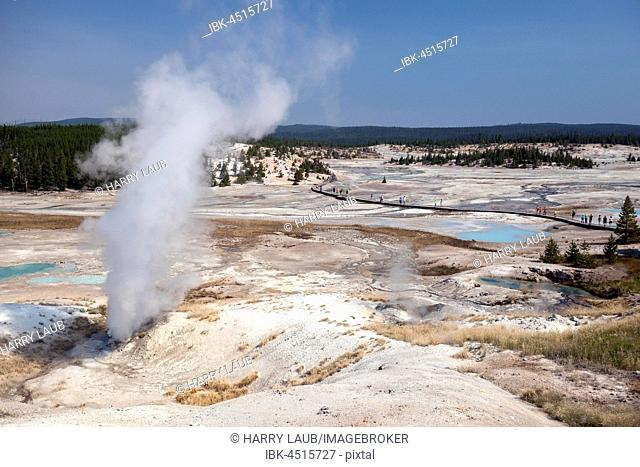 Steamy geysers, hot springs, mineral deposits in Porcelain Basin, Noris Geyser Basin, Yellowstone National Park, Wyoming, USA
