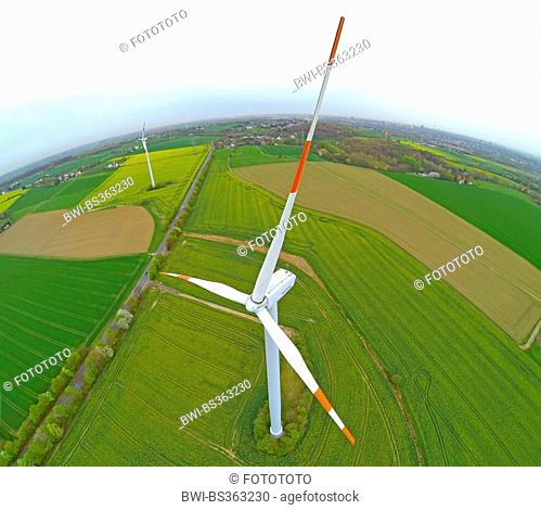 aerial view to wind wheel in budding rape field, Germany, North Rhine-Westphalia, Ruhr Area, Witten