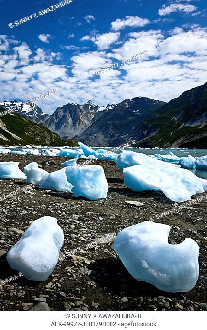 Scenic of icebergs from McBride Glacier in Muir Inlet, Glacier Bay National Park & Preserve, Southeast Alaska, Summer