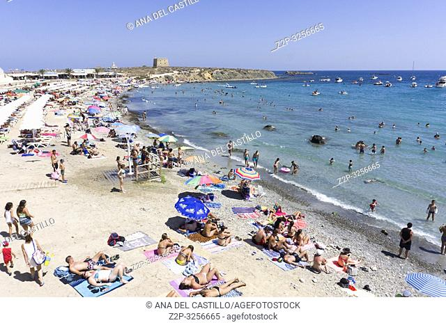 Landscape in Tabarca, is an islet located in the Mediterranean Sea, close to the town of Santa Pola, in the province of Alicante, Valencian community, Spain