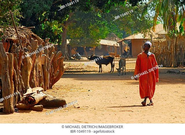 Man on the village street of Tumani Tenda, ecotourism village, Gambia, Africa