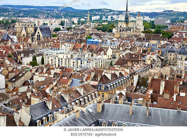 Dijon, Côte d'Or, Burgundy Region, Bourgogne, France, Europe