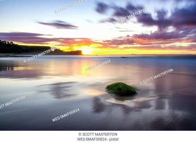 uK, Scotland, East Lothian, North Berwick, Firth of Forth, Tantallon Castle at sunset
