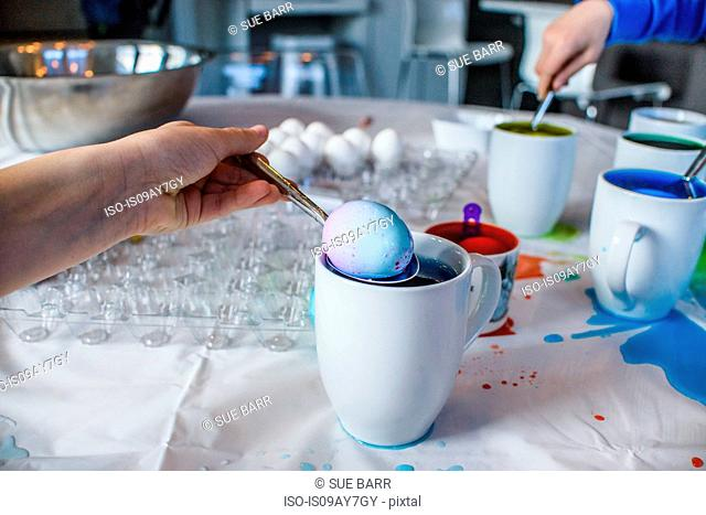 Close up of boy's hand removing blue dyed egg from mug on table for Easter