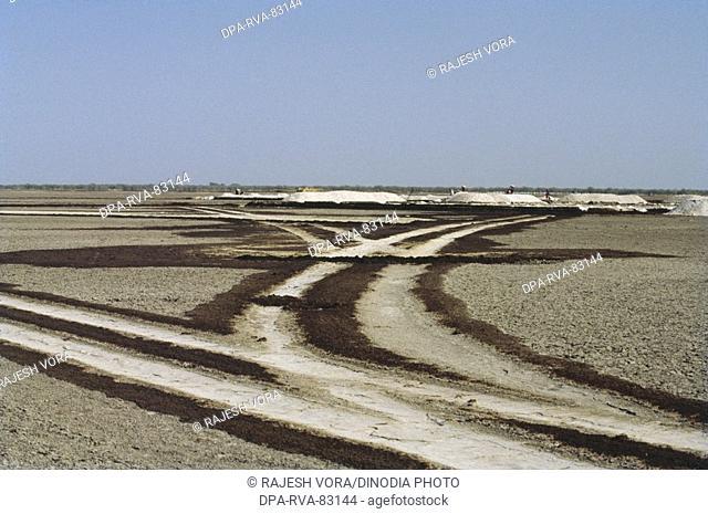 salt plant , saline land with tyre tracks , little rann of kutch , gujarat , india