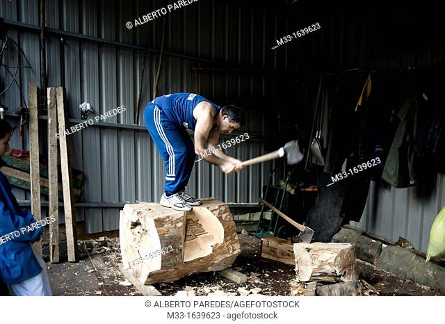 Ernesto Ezpeleta 'Bihurri', wood cutter or aizkolari in Basque language  Training near his home in Mendaro  Basque rural sports Herri Kirolak in basque language...
